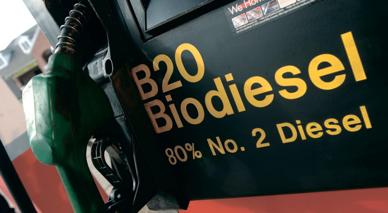 Рада ввела норматив - обязательное использование не менее 5% биотоплива в автобензине — фото 1