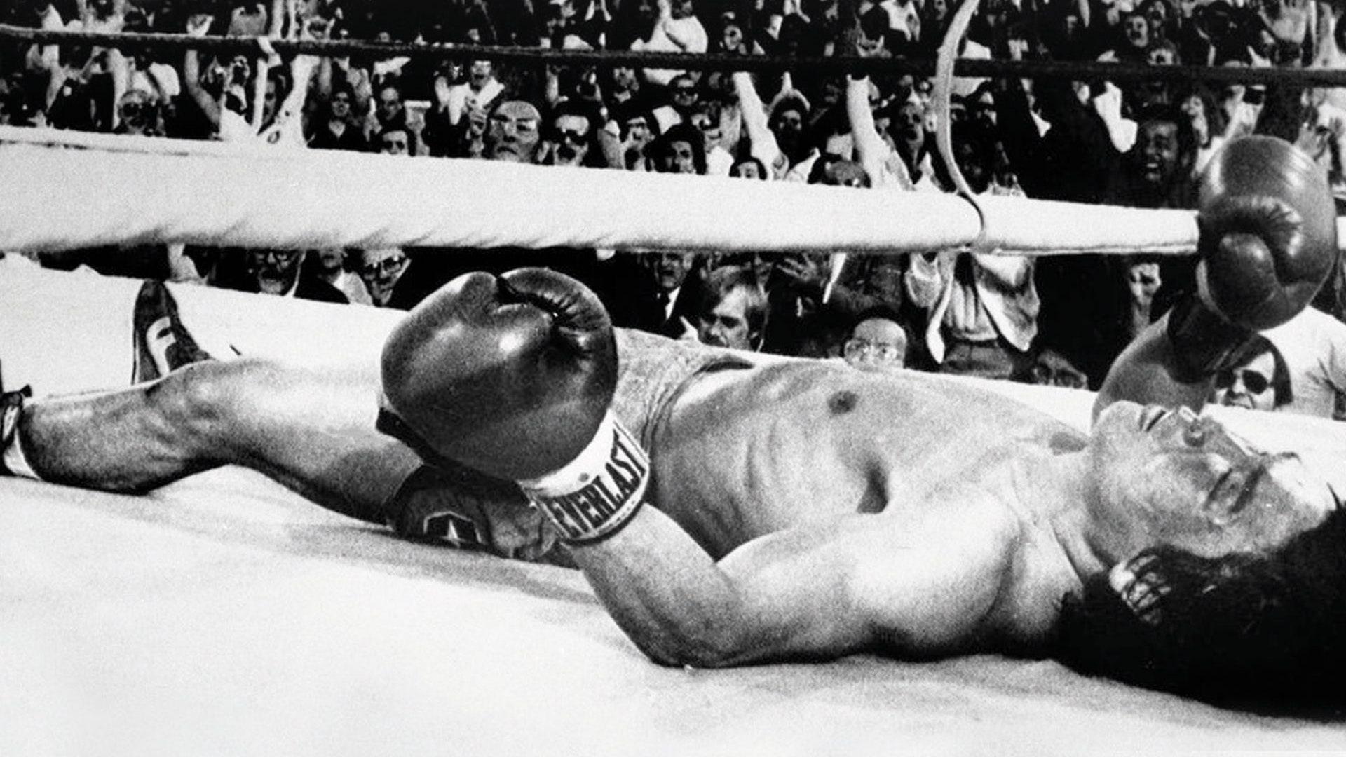22 июля, Международный день бокса — фото 3