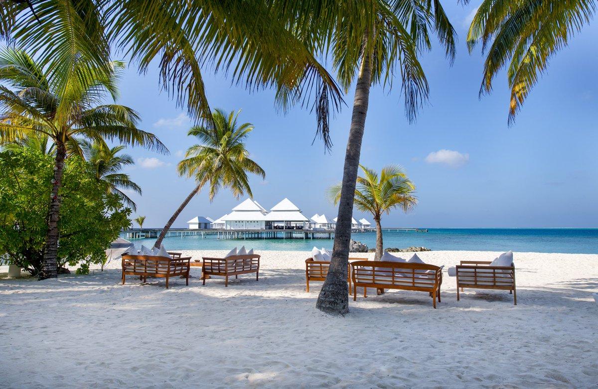 Мальдивские острова: — одно из самых экологически чистых мест на Земле — фото 7
