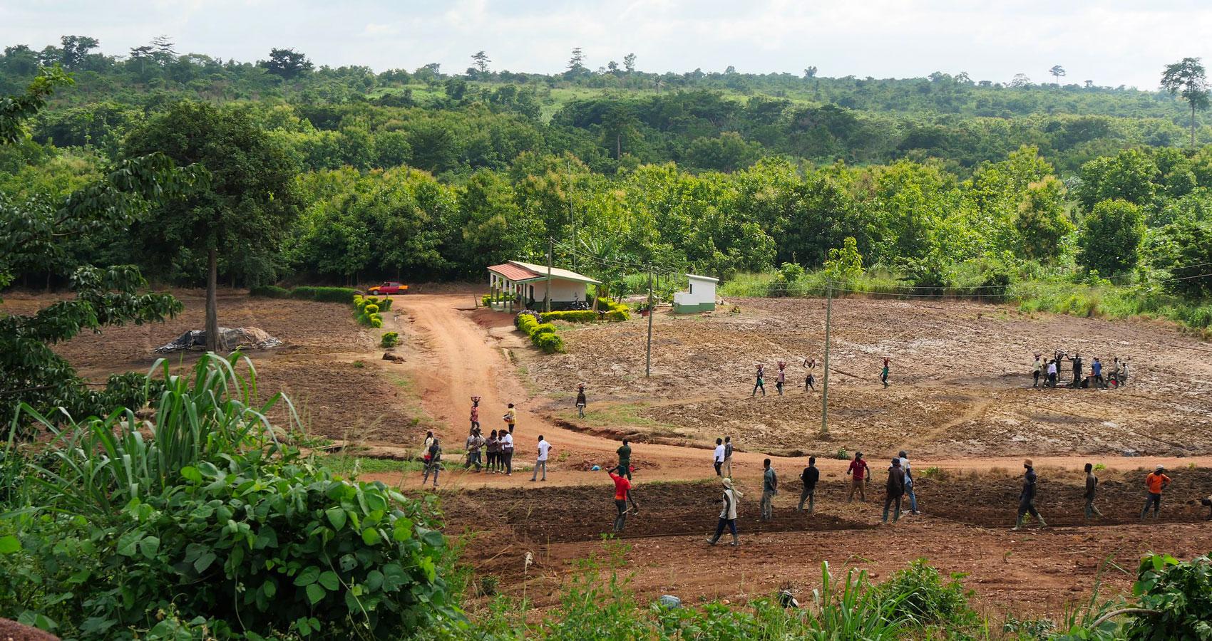 19 сентября 2021 года празднуем День работника леса — фото 2