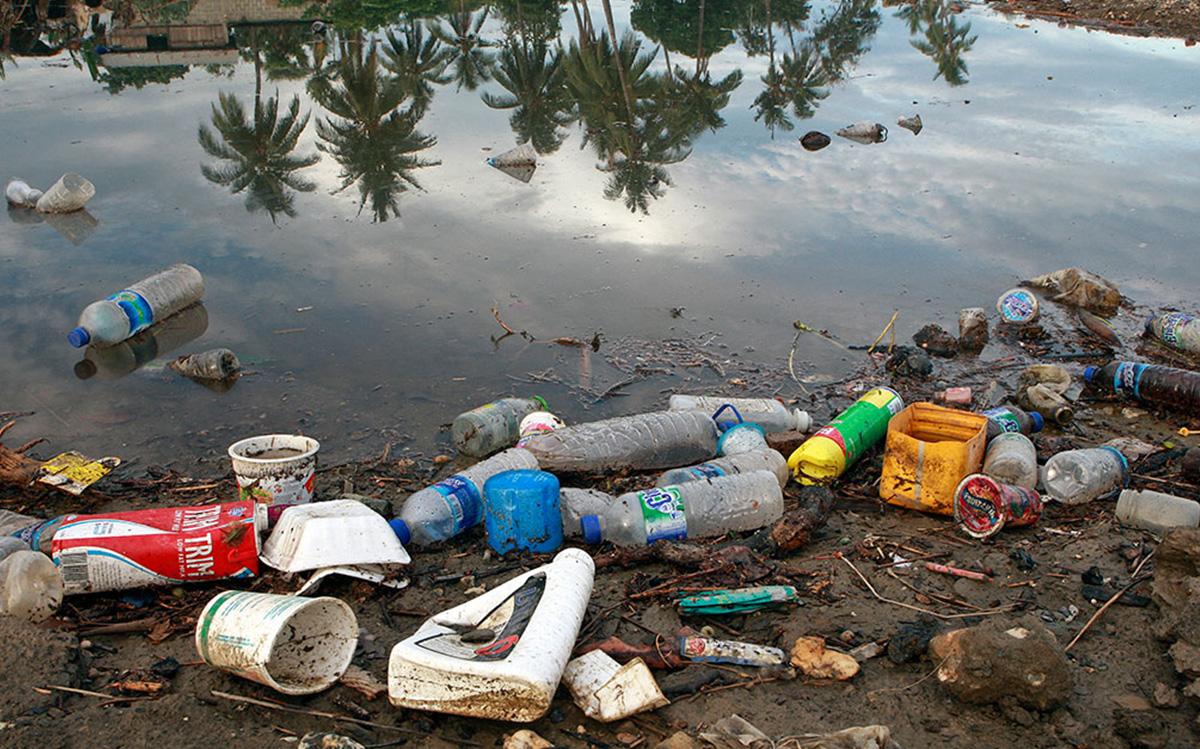 11 крупнейших экологических проблем 2021 года — фото 2