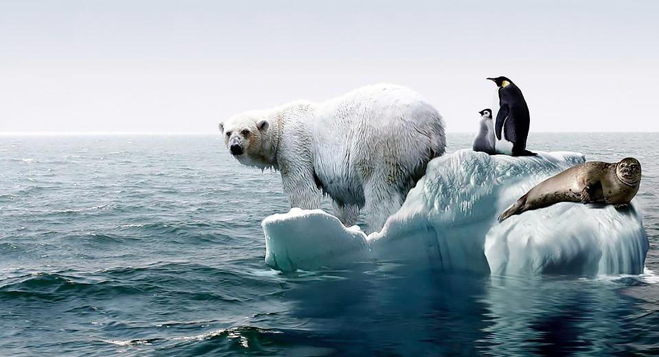 CO2 и атмосфера: в чем угроза? — фото 4