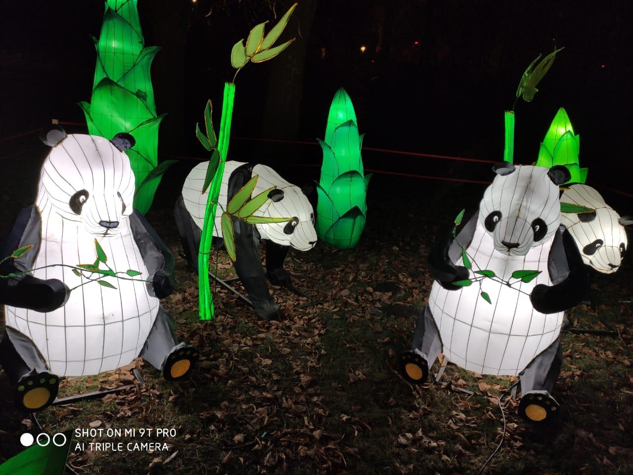 Гигантские китайские фонари: в Буковеле создадут городок световых инсталляций — фото 5