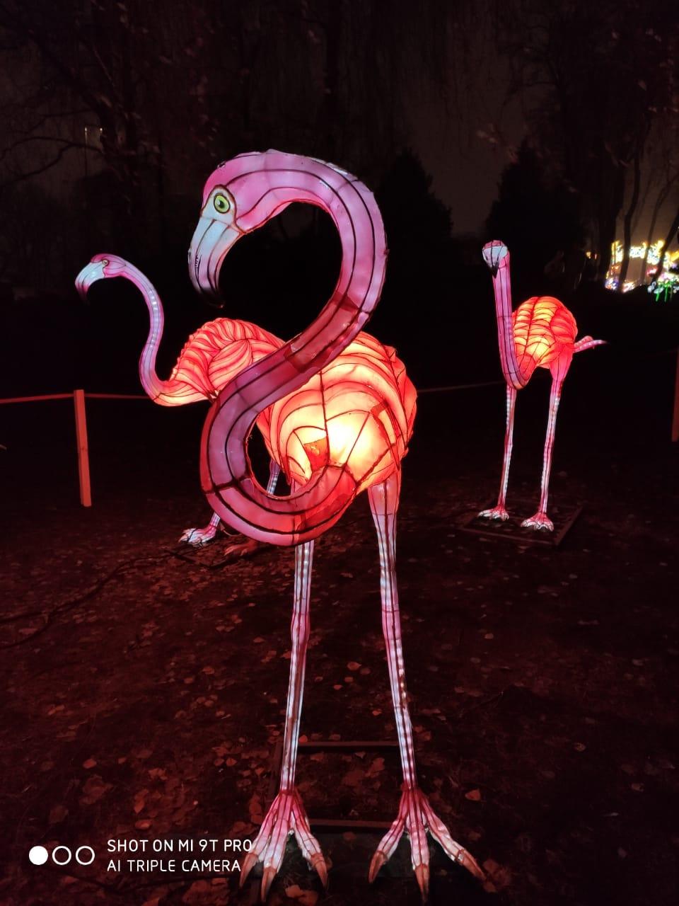 Гигантские китайские фонари: в Буковеле создадут городок световых инсталляций — фото 3