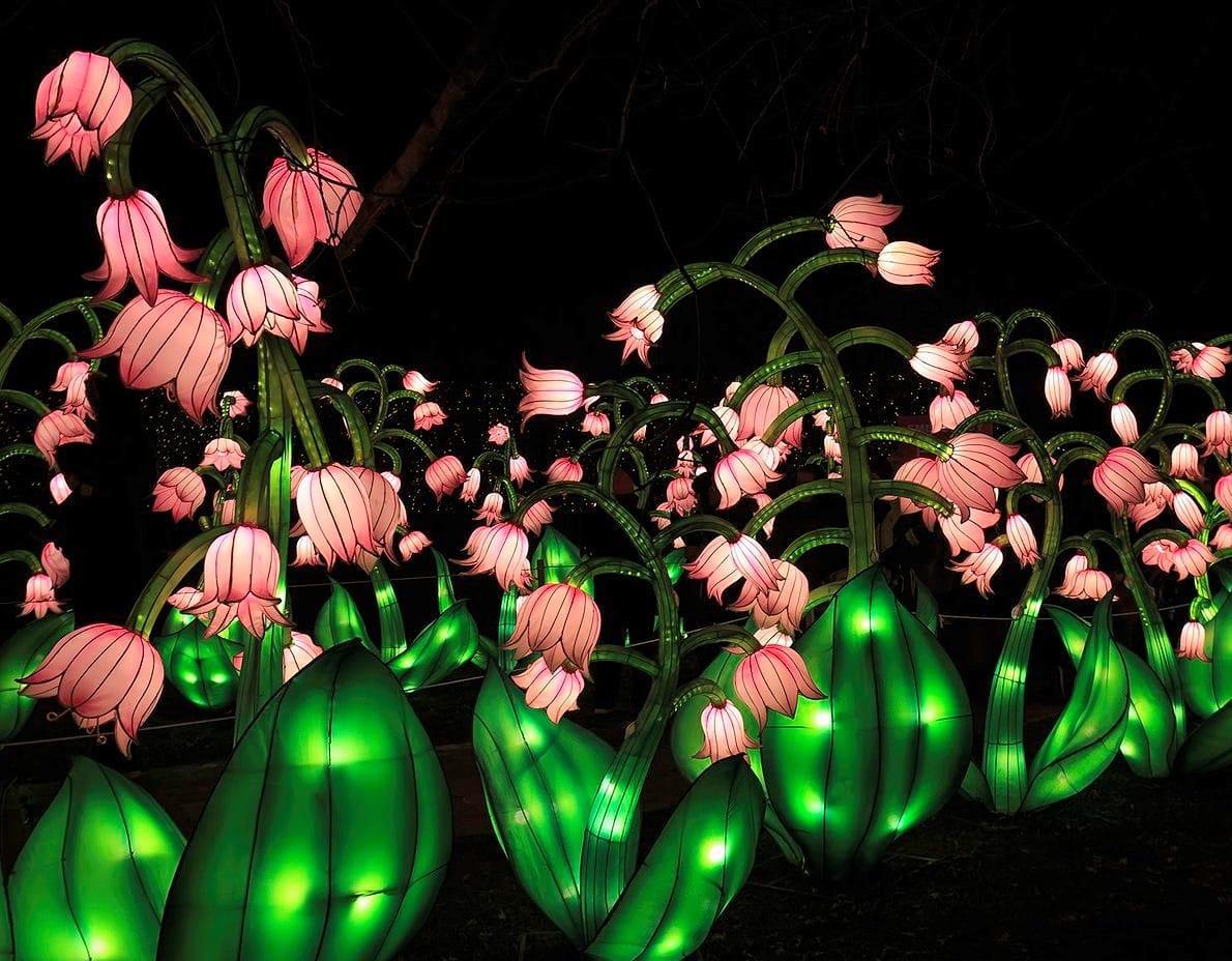 Огненное шоу, гигантский лев и китайские фонари: в Киеве создадут настоящий парк иллюминаций — фото 4