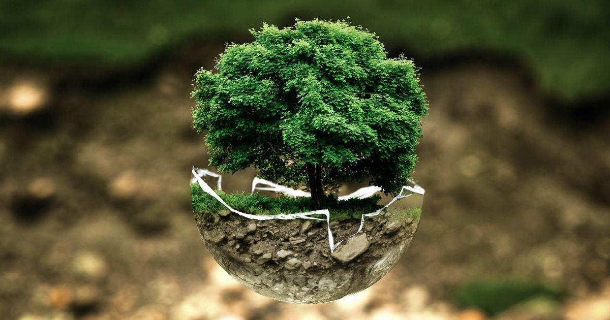 22 апреля- Международный день Матери-Земли (International Mother Earth Day) — фото 1