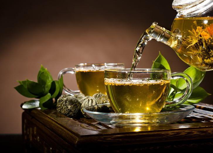 Здоровье в чашке: чем полезен зеленый чай — фото 1