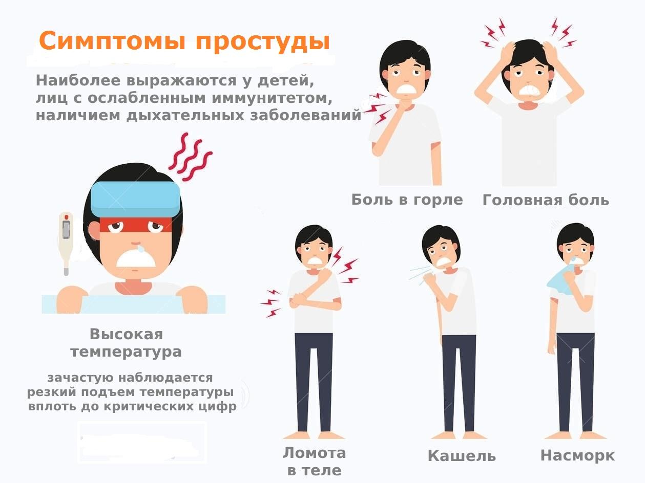 Простудные заболевания и методы их лечения — фото 1