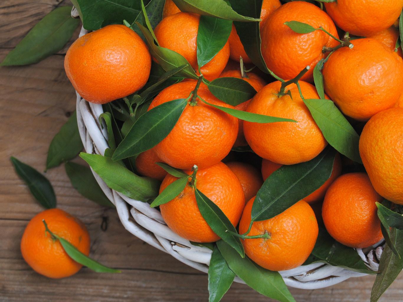 Яркий витамин: как цитрусовые влияют на наш организм — фото 5