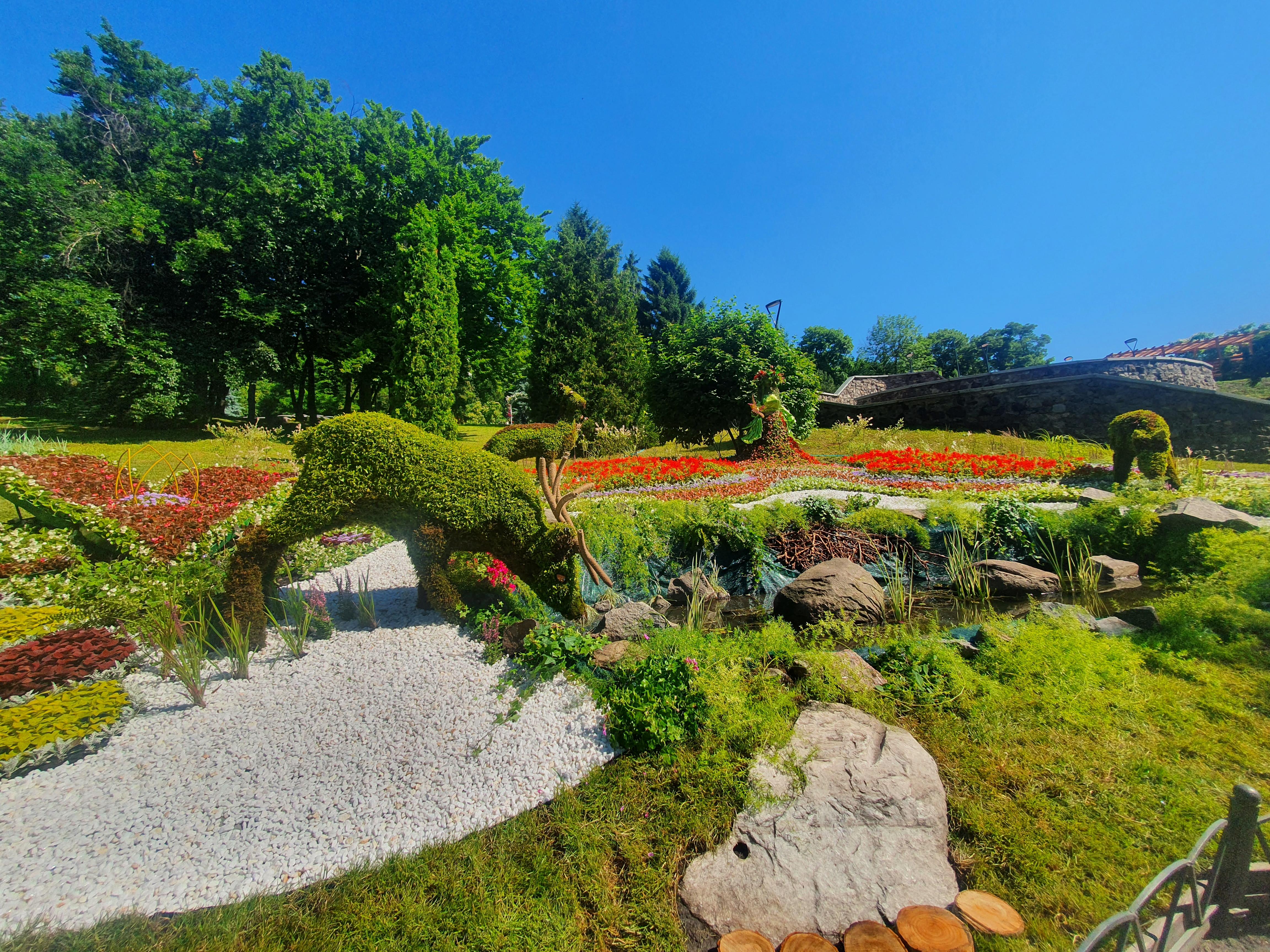 Дикие животные в центре Киева: в столичном парке стартовала летняя выставка цветов — фото 2