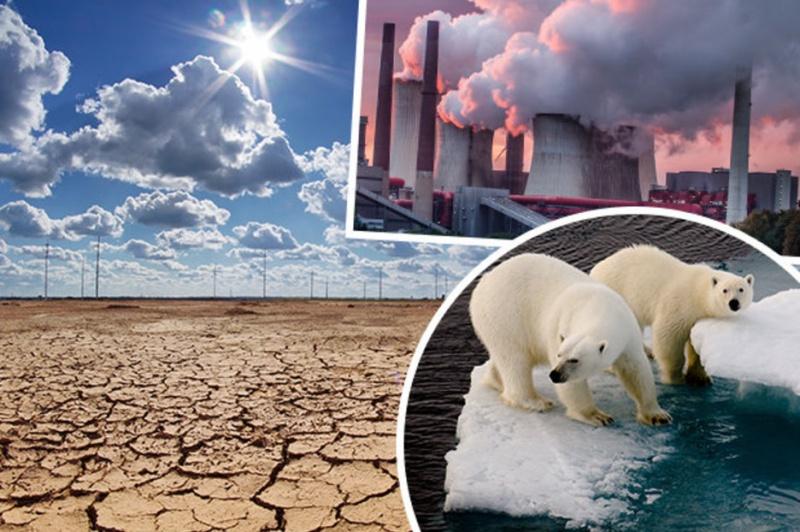 11 крупнейших экологических проблем 2021 года — фото 4