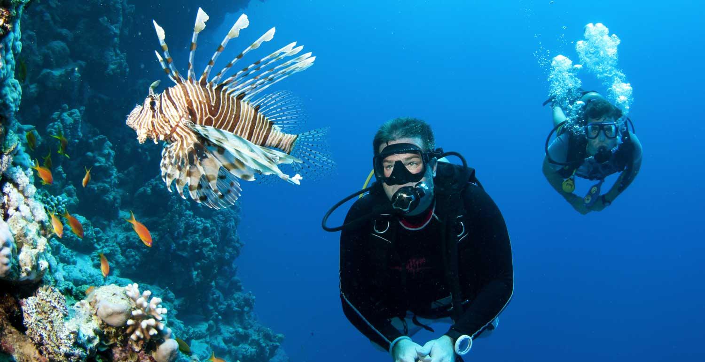 Мальдивские острова: — одно из самых экологически чистых мест на Земле — фото 10