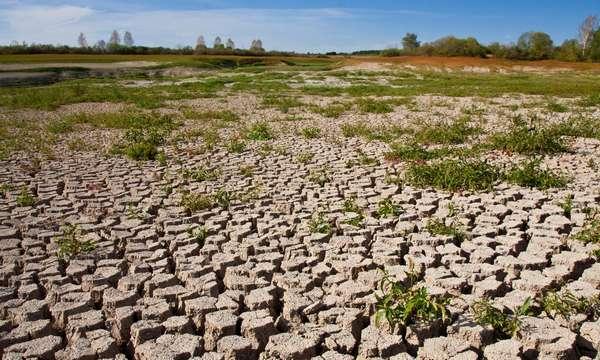 11 крупнейших экологических проблем 2021 года — фото 6