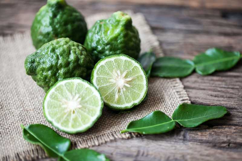 Яркий витамин: как цитрусовые влияют на наш организм — фото 3
