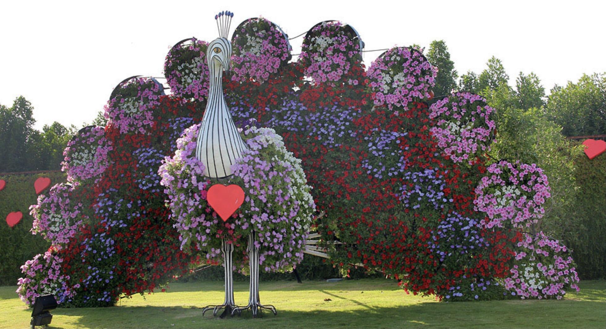 Дикие животные в центре Киева: в столичном парке стартует летняя выставка цветов — фото 1