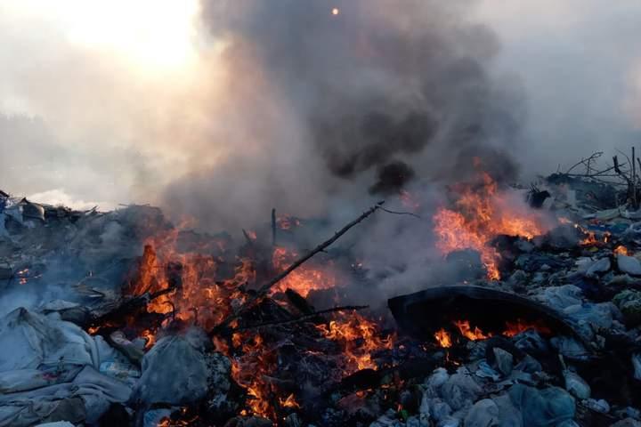 Горить вже кілька годин: в Дніпропетровській області спалахнуло звалище — фото 1